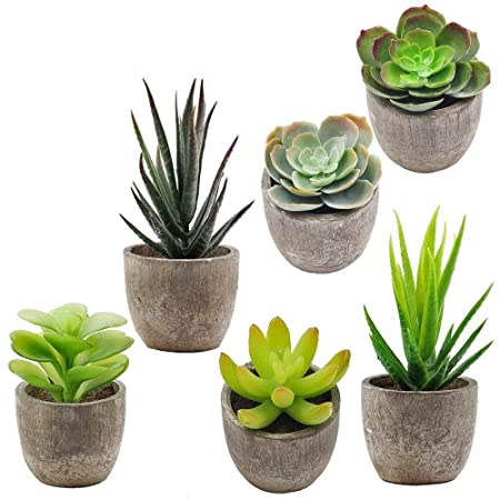 Supla 6 Pcs Assorted Potted Succulents Plants Decorative Artificial Succulent Plants Potted Faux Cactus Aloe with Gray Pots Artificial Topiary Plant Potted Artificial Plants at amazon