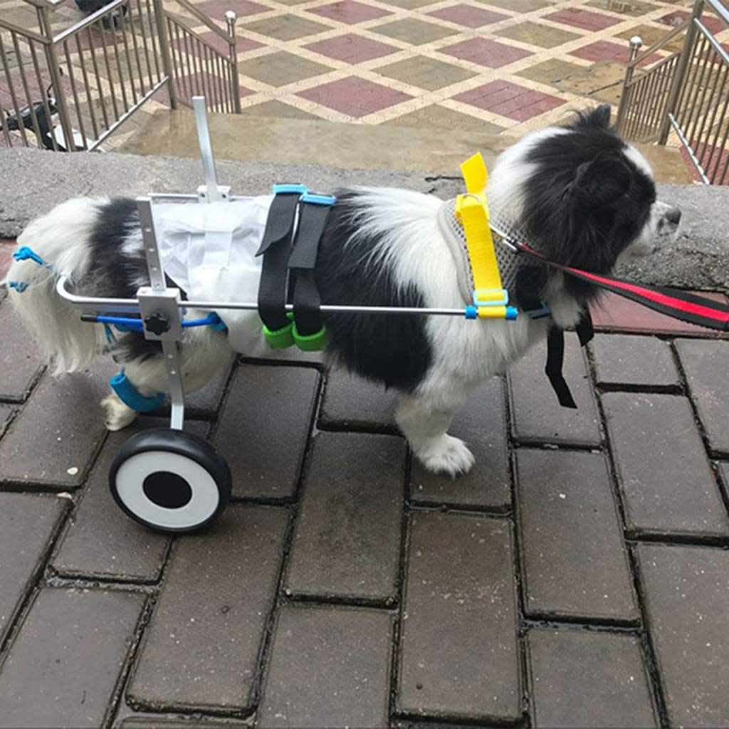 Homyl Silla de de de Ruedas Mascotas Minusválidos Patas Traseras Perro Pequeño Gato Caminando - S 4e9493