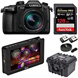 Panasonic Lumix GH5 Kit with 12-60mm 4K Mirrorless Camera and Ikan DH5e 5 4K Signal LCD Field Monitor Bundle