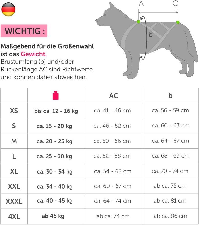 ski-joering tra/îneau bleu // jaune fluo couleur X-Back harnais pour chien pour le v/élo scooter