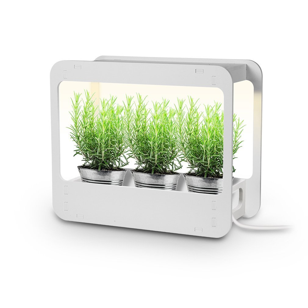 GrowLED Plus Plant Grow Light LED Indoor Garden, Kitchen Garden with Timer Function, 24V Low Safe Voltage, Ideal for Plant Grow Novice Or Enthusiasts, Various Plants, DIY Decoration, White Grow Light