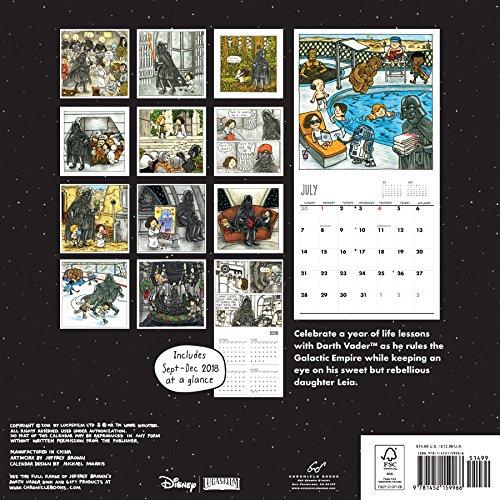 Vader's Little Princess 2019 Wall Calendar