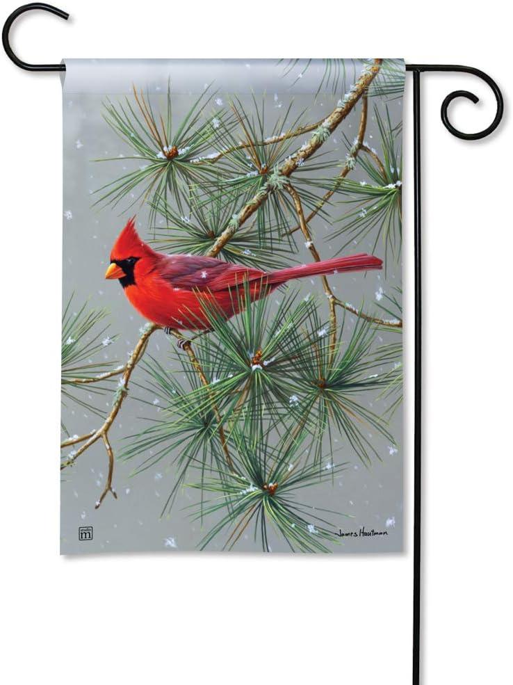 BreezeArt Studio M Winter Red Bird Decorative Garden Flag – Premium Quality, 12.5 x 18 Inches