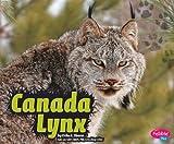 Canada Lynx, Erika L. Shores, 1429644842