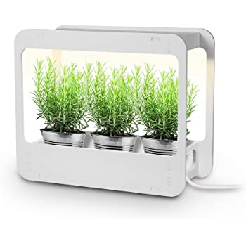 Amazon.com : GrowLED Plus Plant Grow Light LED Indoor