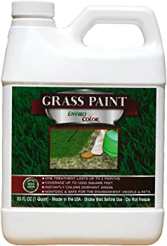 EnviroColor 4EverGreen Grass and Turf Paint