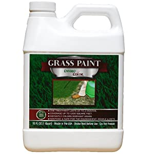 EnviroColor 4EG0032 851612002100 1,000 Sq. Ft. 4EverGreen Grass and Turf Paint, 1250 Square Feet Green