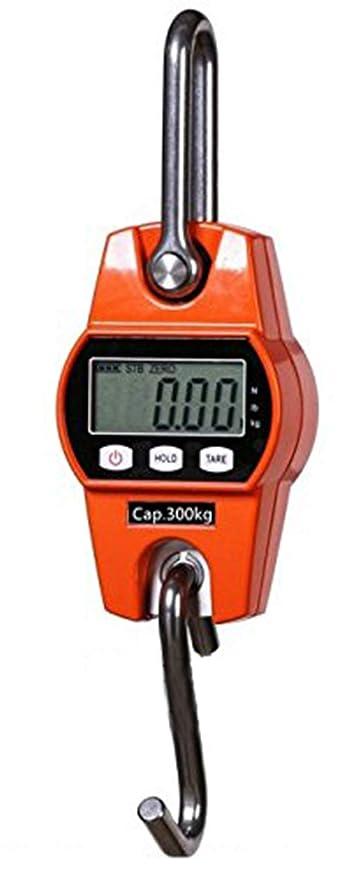 CGOLDENWALL ocs-l electrónico de alta precisión con un peso de grúa Digital escala colgante