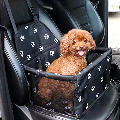 The 8 best dog car seats for two small dogs