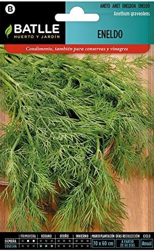 Semillas Aromáticas - Eneldo - Batlle: Amazon.es: Jardín