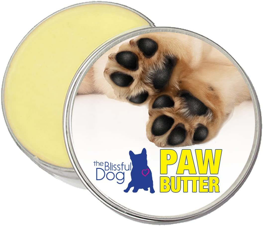 The Blissful Dog Paw Butter Softens Your Dog's Rough, Dry Paws