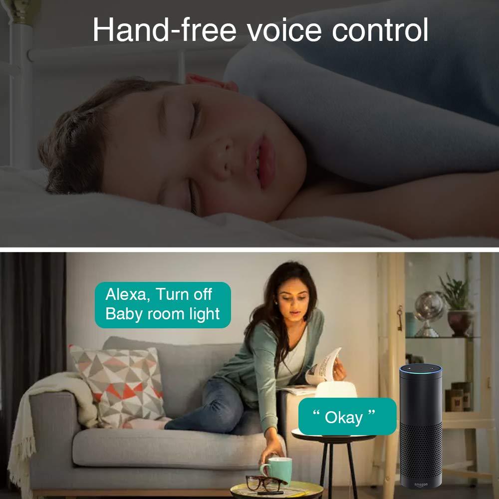 Smart WLAN Schalter Wireless Relais Modul WiFi Switch und Fernbedienung Intelligentes System Sprachsteuerung mit  Alexa Google Assistant IFTTT DIY Smart Home f/ür elektrische Haushaltsger/äte