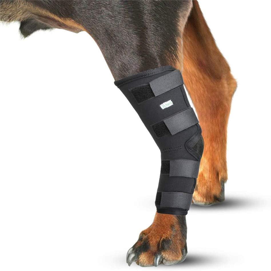 GKPLY Ortesis de Pierna para Perro, Perro canino, Pierna Trasera, corvejón, Envoltura de articulación, Envoltura de compresión para la Pata, con Protege Las heridas.