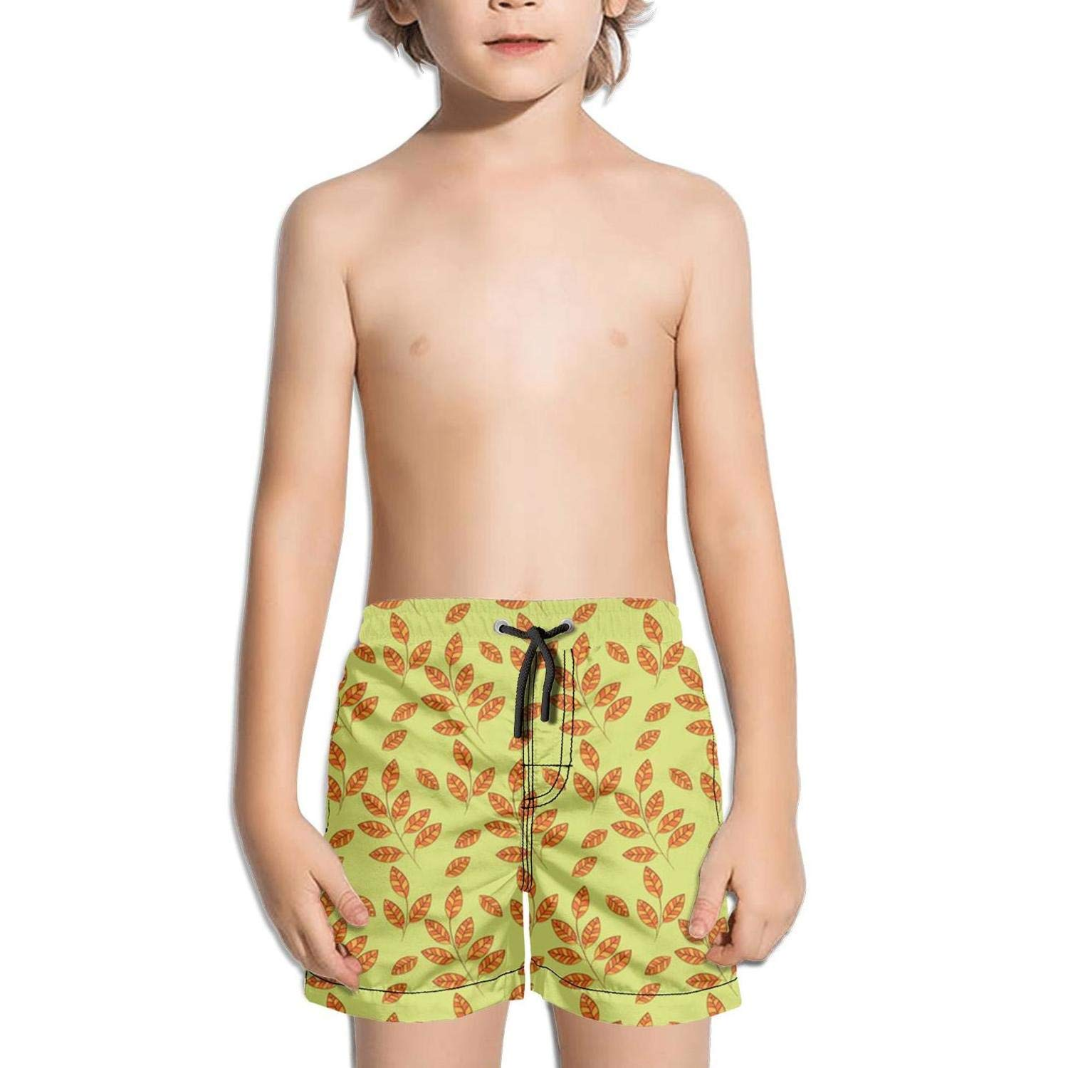 Lenard Hughes Boys Quick Dry Beach Shorts with Pockets Autumn Leaves Seamless Pattern Background Swim Trunks for Summer