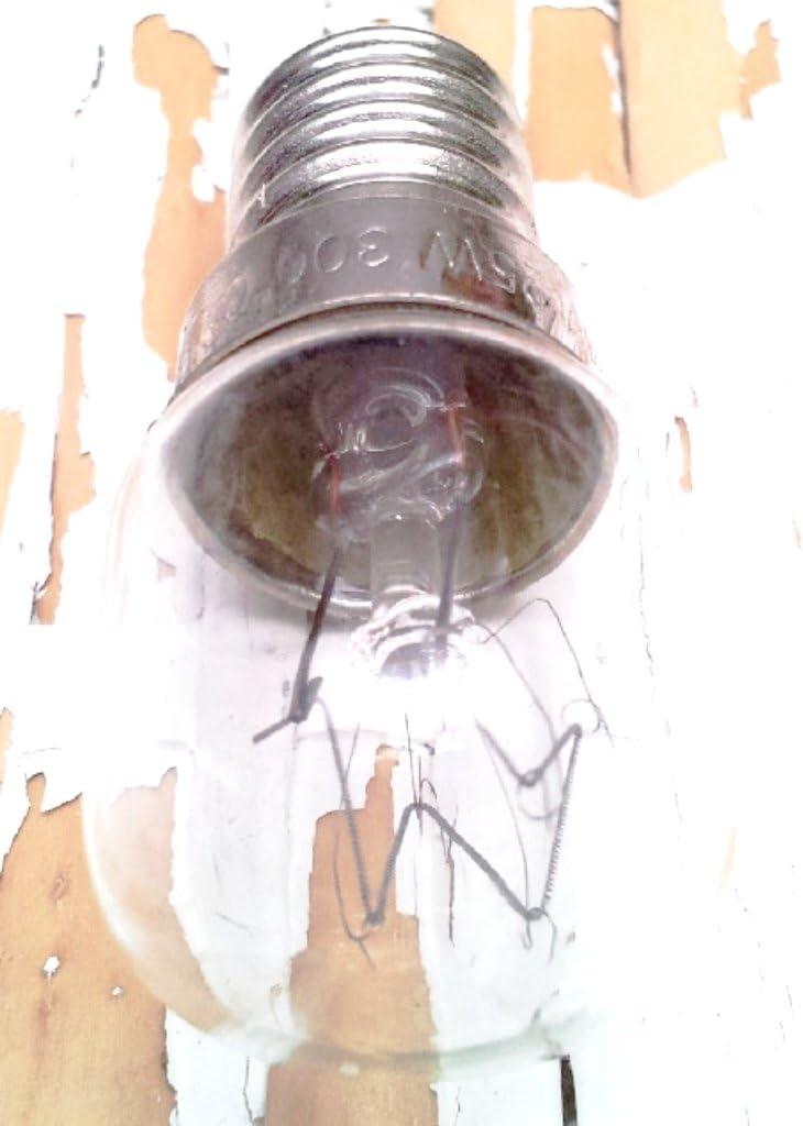 ElectroDH 1263025 DH LAMPARITA/BOMBILLA FILAMENTO PARA HORNOS E14 25W: Amazon.es: Bricolaje y herramientas