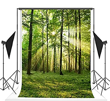 10x12 FT Photo Backdrops,Beautiful Serenity Trees Forest Track Path Garden Leaves Grass Sunny Skies Photography Background for Baby Shower Birthday Wedding Bridal Shower Party Photo Studio Decor