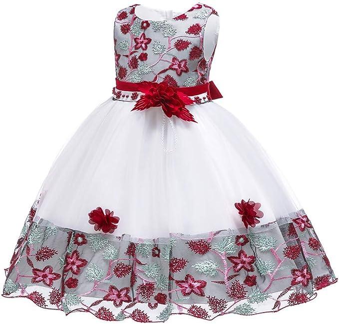Amazon.com: NSSMWTTC - Vestido de fiesta para niñas ...