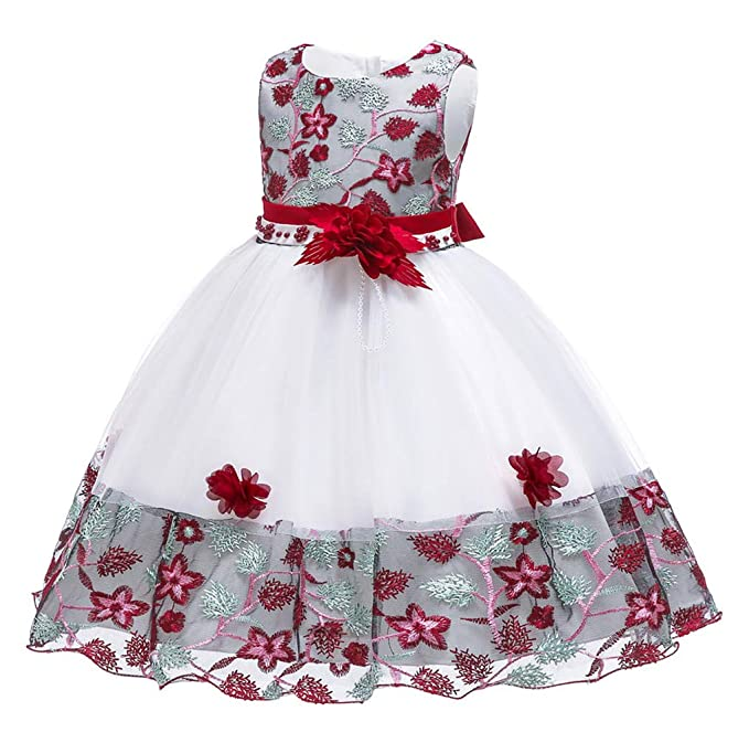 f58fc86c483c6 NSSMWTTC Flower Girls Dresses 1Y-9Y Kid Pageant Party Embroidery Dress