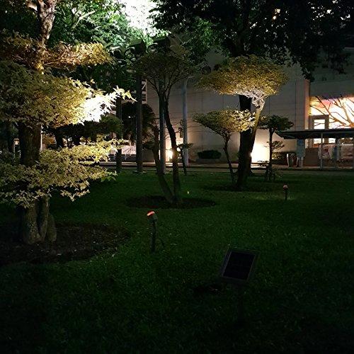 HEX 30X Twin Solar Spotlight Warm White LED for Outdoor Garden Yard Landscape Downlight by Solar Light Mart (Image #5)