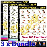 Eazy How To 3 Pack Bundle Exercise Workout Poster BIG 510 x 730mm Train Endurance, Tone, Build Strength & Muscle Home Gym Chart