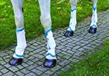 Shires Airflow Turnout Socks White/Teal Full