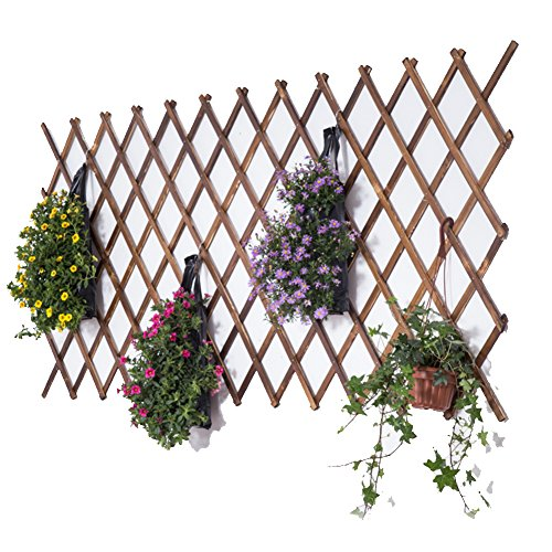 SL&ZX Telescopic anti-corrosion wood fence,Courtyard garden fence Outdoor balcony fence Wall decorative mesh Flower rack climbing frame-H 175x24cm(69x9inch) (Flower Fence Picket Frame)