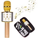 HAITRAL Wireless Karaoke Microphone Portable Bluetooth Microphone and Speaker Handheld for iPhone & Android (Gold)