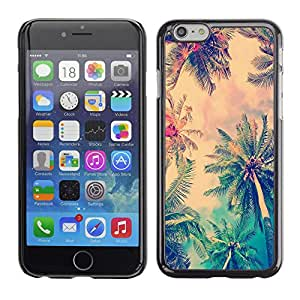 Paccase / SLIM PC / Aliminium Casa Carcasa Funda Case Cover para - Jamaica Palm Tree Coconut Summer - Apple Iphone 6