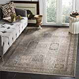 Safavieh Vintage Premium Collection VTG127-3110 Transitional Oriental Mouse Brown Panels Distressed Silky Viscose Area Rug (10′ x 14′) Review