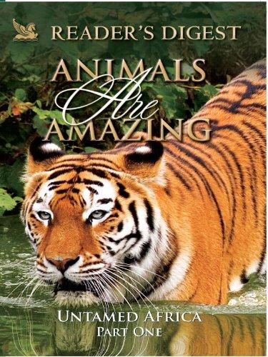 Amazing Animals Video (Animals Are Amazing: Untamed Africa: Part One)