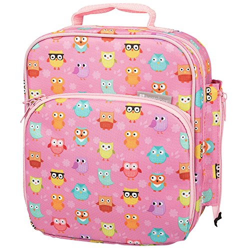 Insulated Durable Lunch Bag - Reusable Meal Tote With Handle and Pockets - Owl