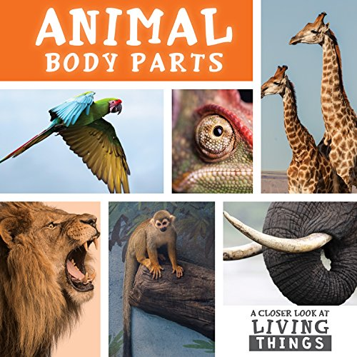 animal body parts book - 1
