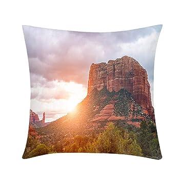 Amazon.com: Cojín para sofá, dormitorio, oficina, coche ...
