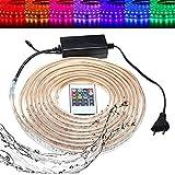 LYEJM 10/15M SMD5050 LED RGB Flexible Rope Outdoor Waterproof Strip Light + Plug + Remote Control AC220V LYEJM (Size : Length 10M)