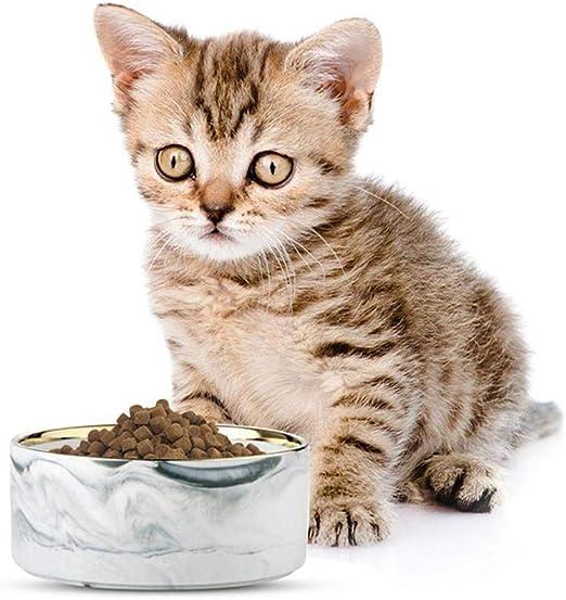 Bebedero Gatos Tazón de cerámica for Mascotas, tazón de Comida o Agua for Mascotas for Perro Gato, alimentador de Platos for Gatos (Color : Gray): Amazon.es: Productos para mascotas