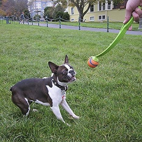 Chuckit pequeño perro lanzador de pelotas de deporte perro juguete ...
