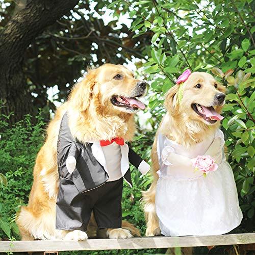 Vestido de Perro, diseño de Flores, Ideal para Bodas, para ...