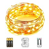 Tools & Hardware : Father.son Dimmable Battery String Lights with Remote Control waterproof 33ft 100 beads leds atmosphere lighting string irrgular DIY shape,Christmas Decoration Lights for Seasonal Holiday (Warm White)