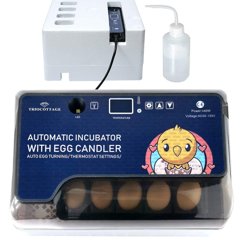 Xpork Egg Incubator Automatic Egg Incubator Poultry Incubator Incubator Automatic Incubator Mini Automatic Digital Egg Incubator Tray Chicken Duck Egg Incubator Tool Transparent Plastic Incubator
