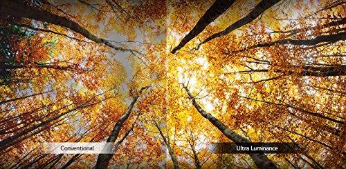 LG Electronics 65-Inch 4K Ultra HD LED TV
