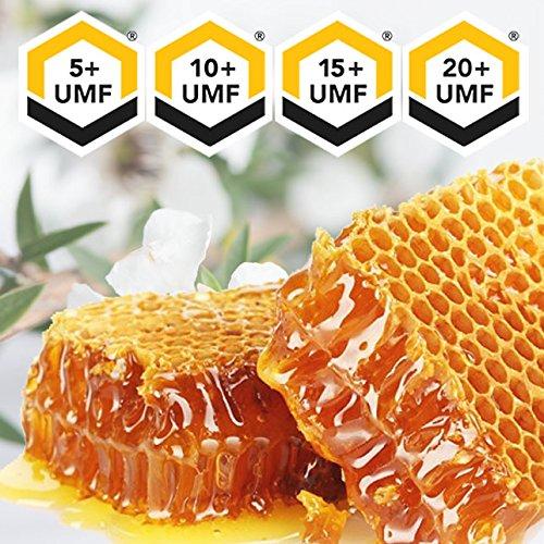 Manuka Honey 500g UMF 20+ (MGO ≥ 829) Pure New Zealand Honey 1.1 lb by API Health (Image #2)