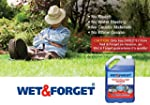 Wet & Forget - Moss Mould Lichen & Al...