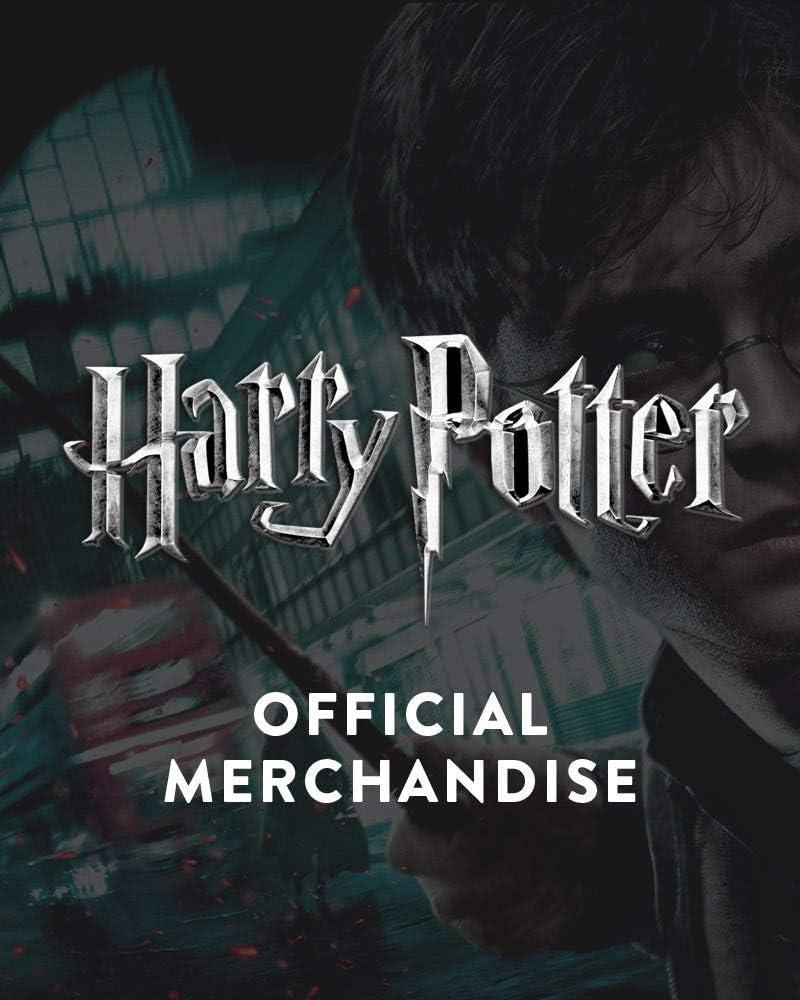 NUMSKULL Harry Potter Fridge Magnet Set