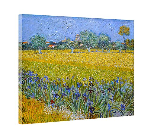 Reproduction Van (Dzhan - 23x31 Inch The Irises by Van Gogh - Canvas Prints Artwork on Canvas Wall Art Oil Painting reproduction for Living Room Home Decorations)