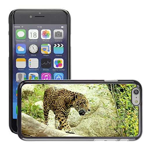 Just Phone Cases Hard plastica indietro Case Custodie Cover pelle protettiva Per // M00129171 Jaguar Big Cat Prowl Stalk Carnivore // Apple iPhone 6 PLUS 5.5""