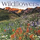 Wildflowers 2020 Wall Calendar