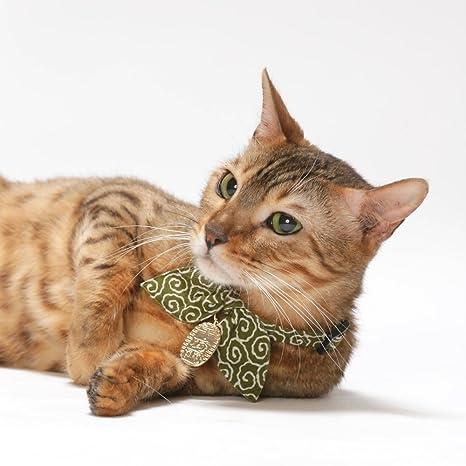 Ninja Cat cuello hebilla de seguridad de retención: Amazon ...