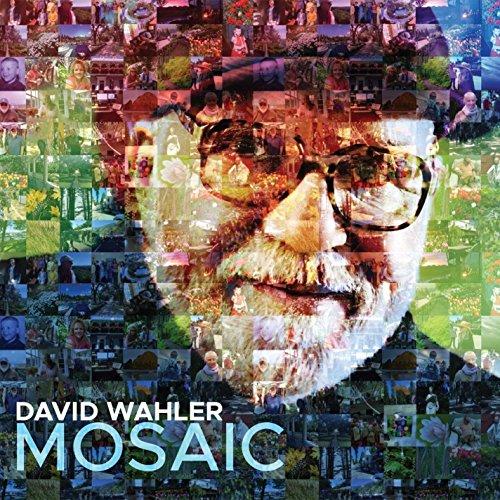 David Mosaic - Mosaic