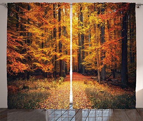 Cheap Ambesonne Farm House Decor Curtains, Magical Fall Photo in National Park with Vivid Leaf Plant Eco Earth Mystical Theme, Living Room Bedroom Decor, 2 Panel Set, 108 W X 90 L Inches, Orange Brown
