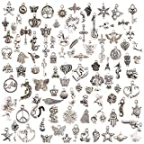 Arts & Crafts : KeyZone Wholesale 100 Pieces Mixed Charms Pendants DIY for Jewelry Making and Crafting